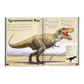 libro per bambini ANIMALS