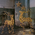 décoration led OUTDOOR LIGHT