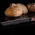 couteau à pain BEST OF