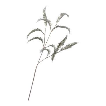 plante MAISON-FLEUR