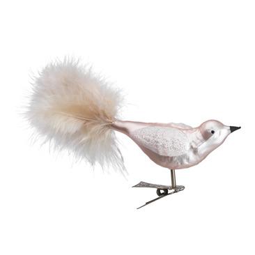 oiseau AMELIE