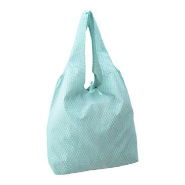 sac FRIDA