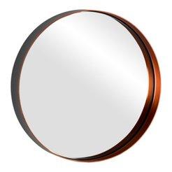 Spiegel Goldeneye