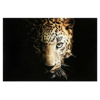 Glasbild ANIMAL
