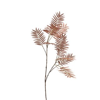 ramo decorativo DRIED-GRASS